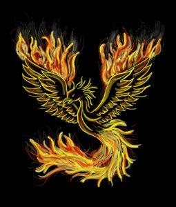 phoenix-1440452_1280